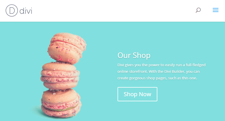 An example of a Divi WooCommerce shop.