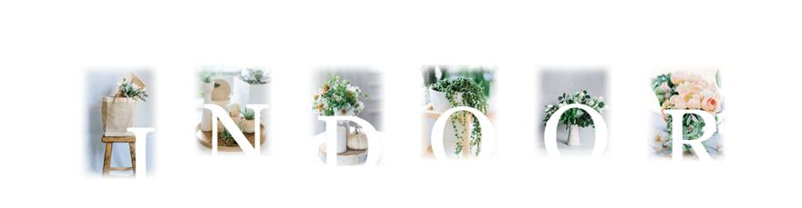 image gallery design