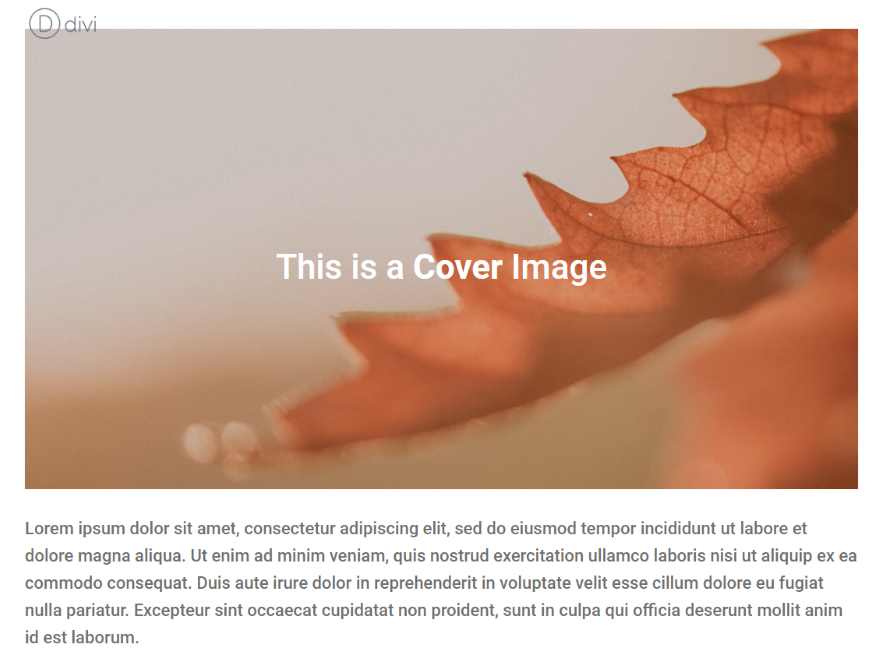 The Difference Between Covered Images and Featured Images in WordPress