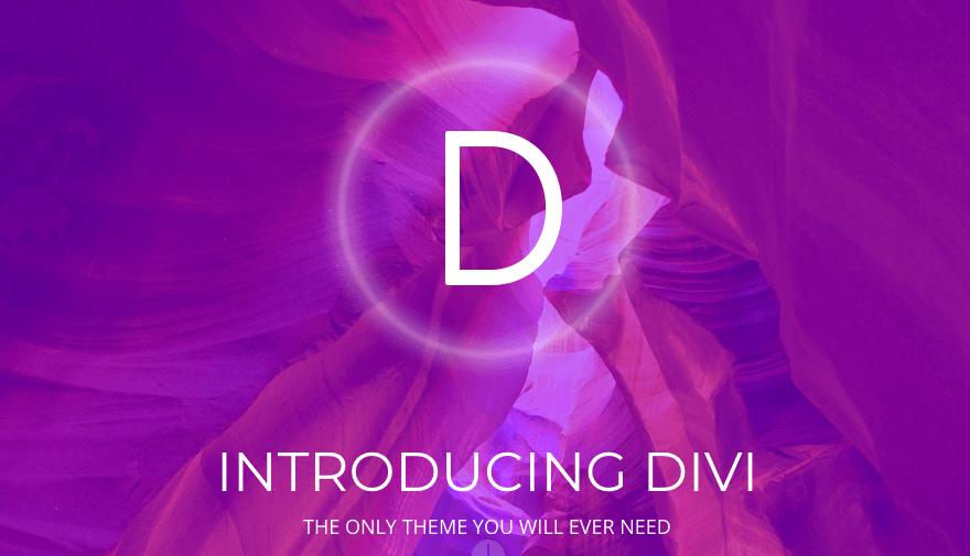 The Divi theme.