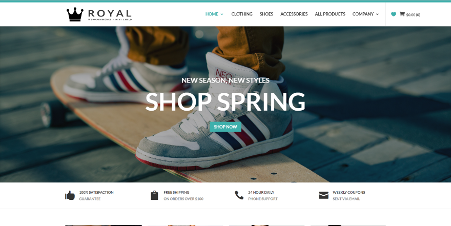 The 10 Best Divi eCommerce Child Themes