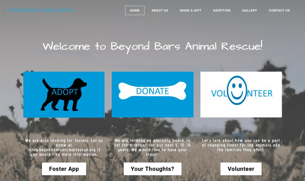 non profit websites