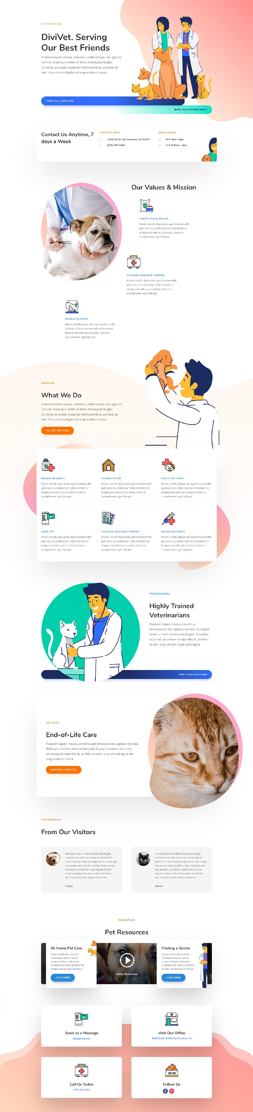 veterinarian layout pack