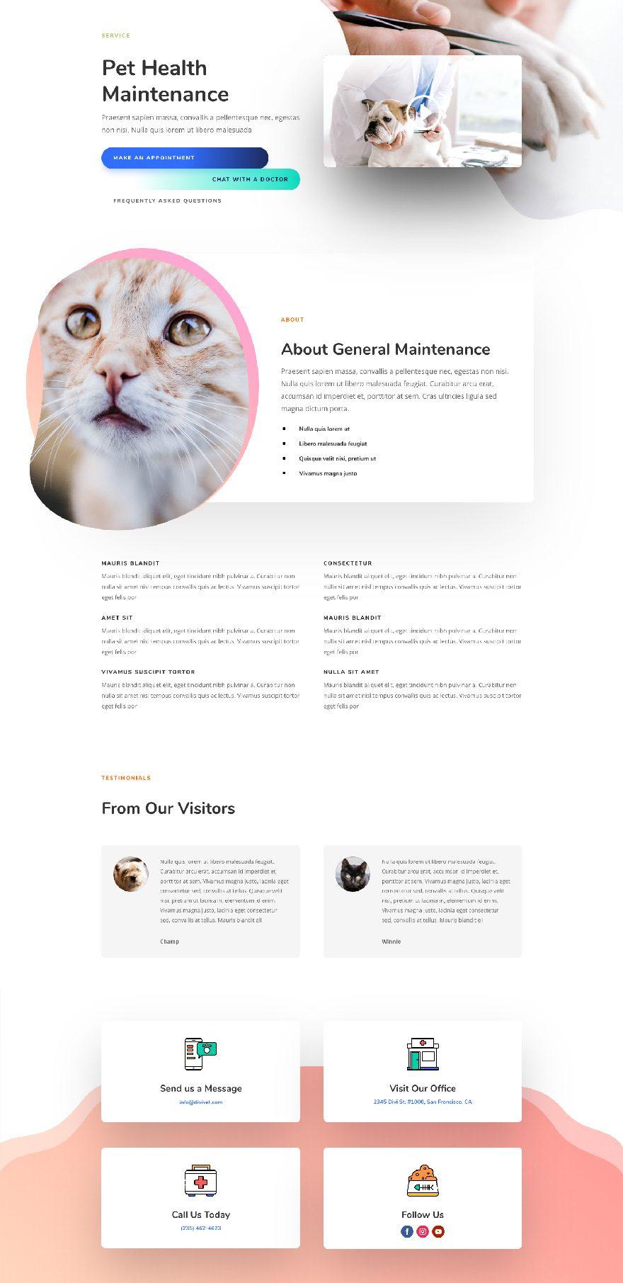 paquete de diseño veterinario