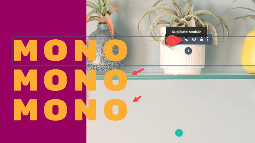 divi monospaced font designs