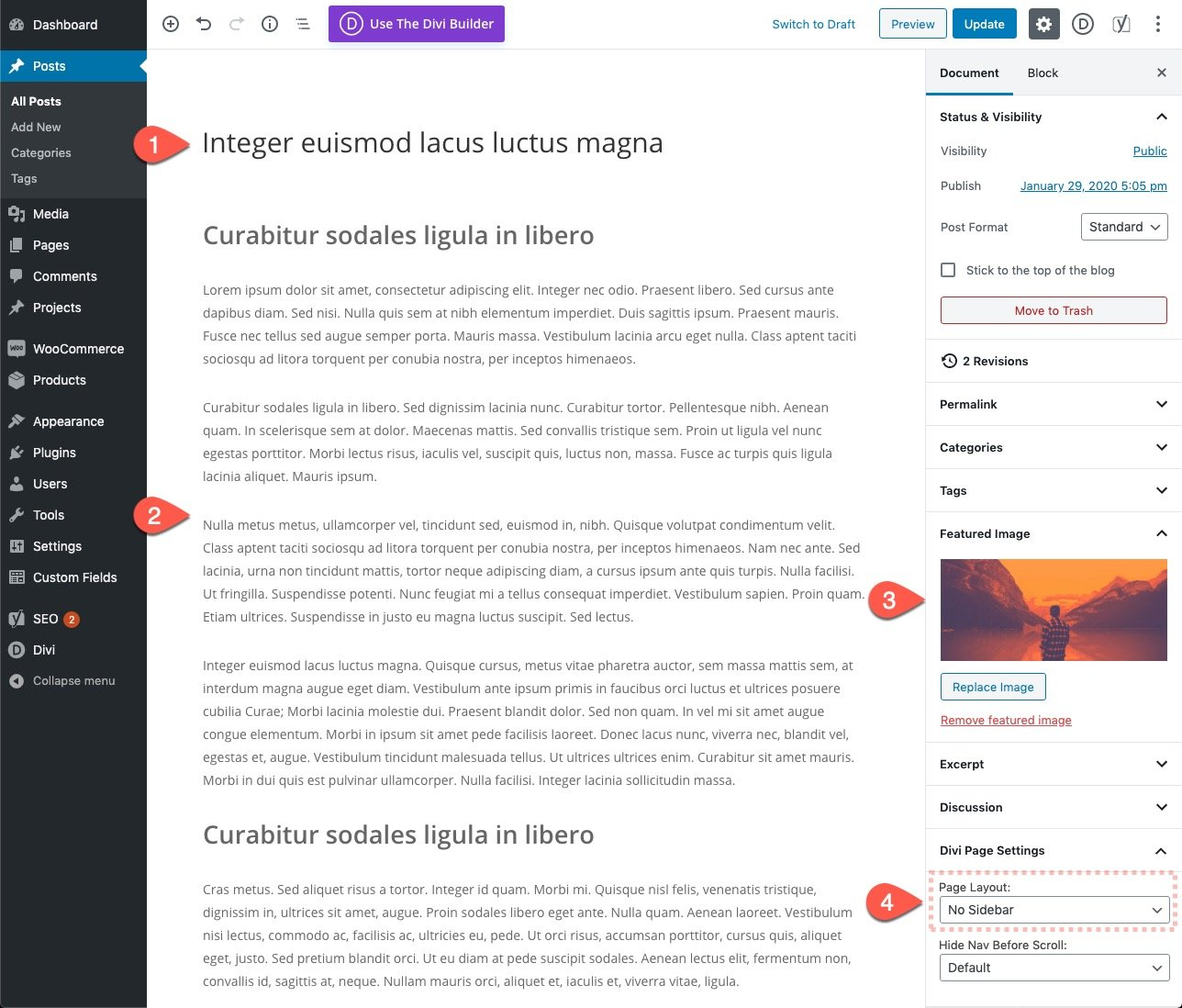 Gutenberg Divi Email Optin