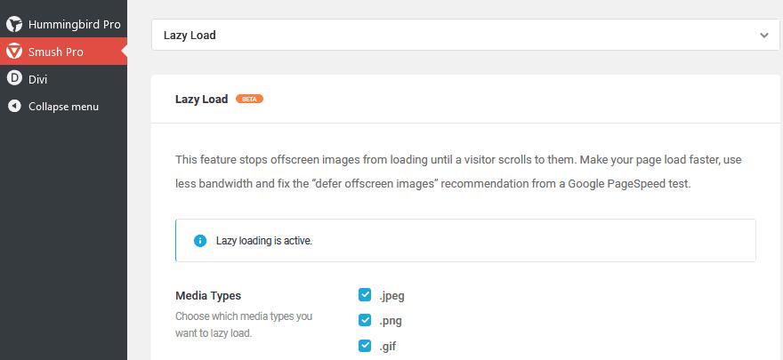 WPMU DEV Optimization Plugins