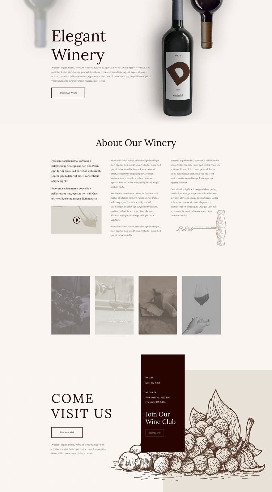 divi winery layout pack