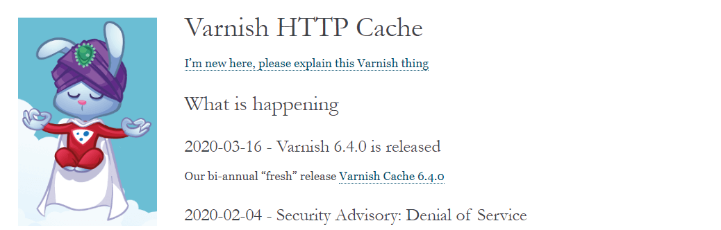 The Varnish website.