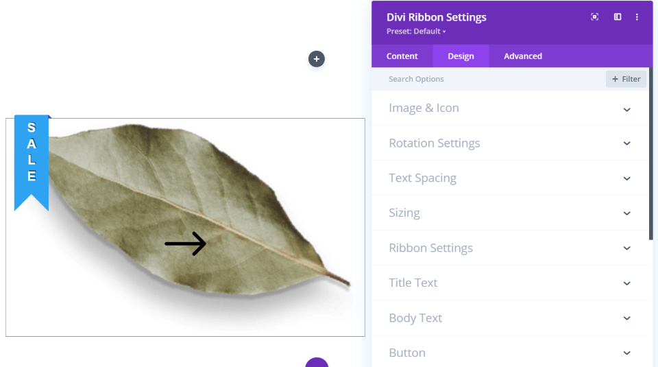 Divi Ribbon Design Tab