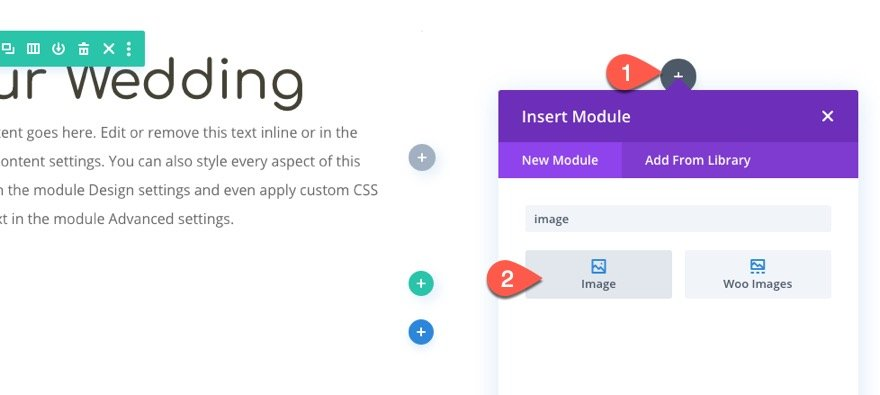 divi moving image shadows