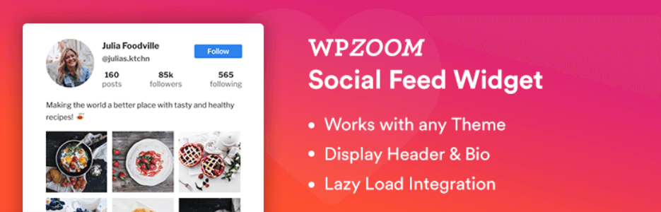The WPZOOM Social Feed Widget plugin.