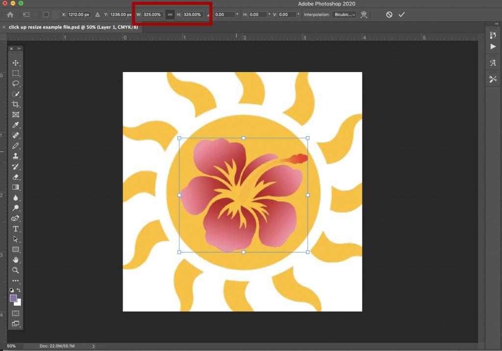 adjust size percentage in photoshop