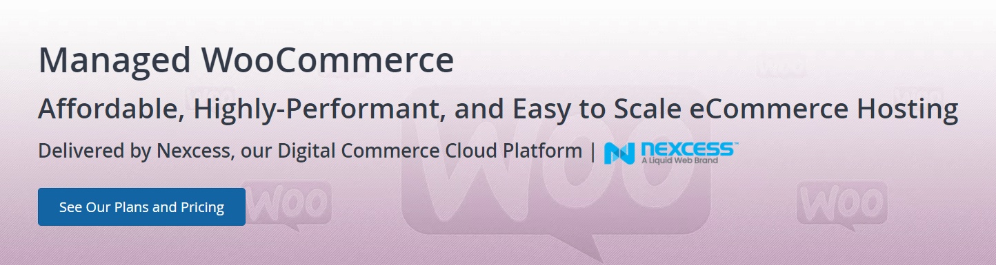 Liquid Web managed WooCommerce hosting.