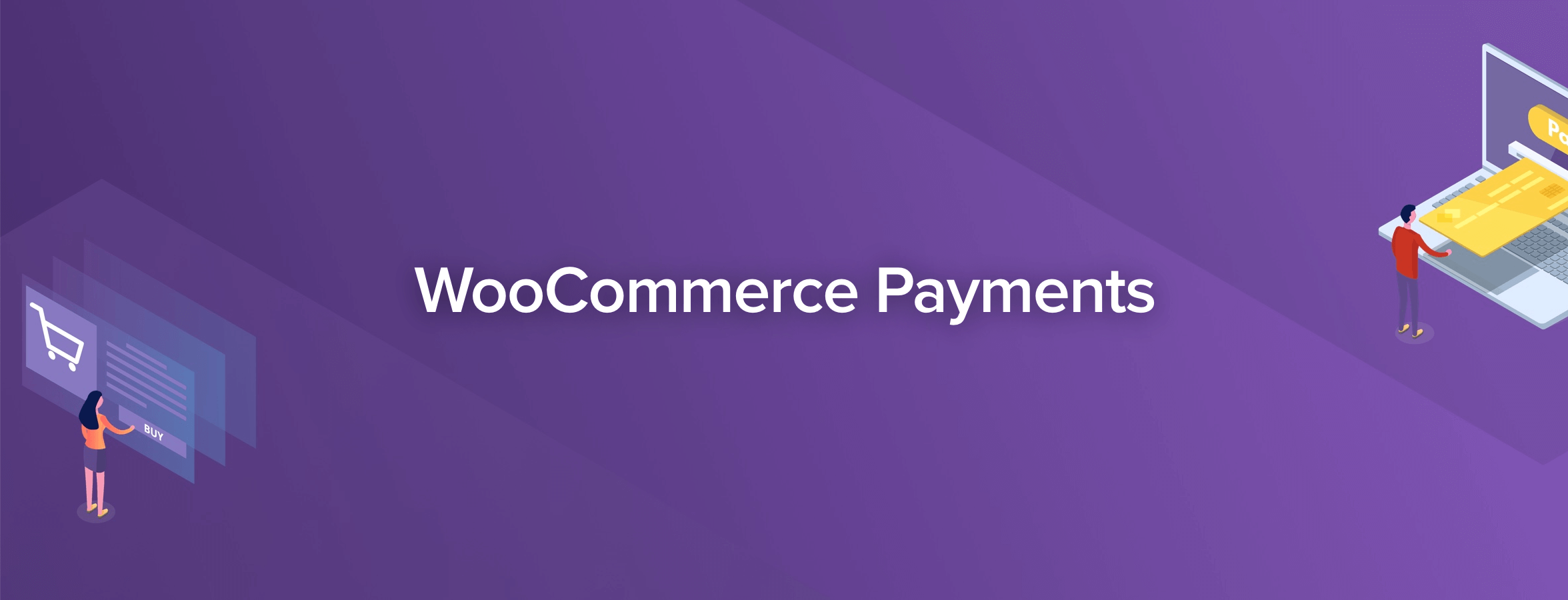 The WooCommerce Payments extension.