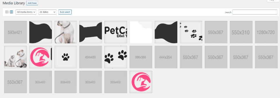 Pet Care Graphics