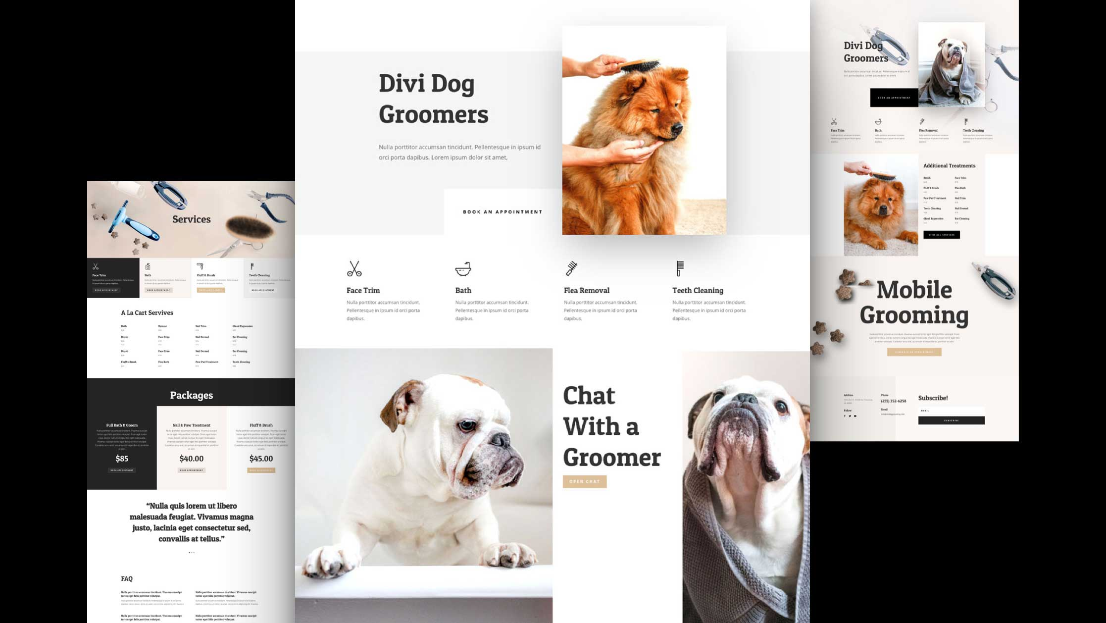 Get a FREE Dog Grooming Layout Pack for Divi