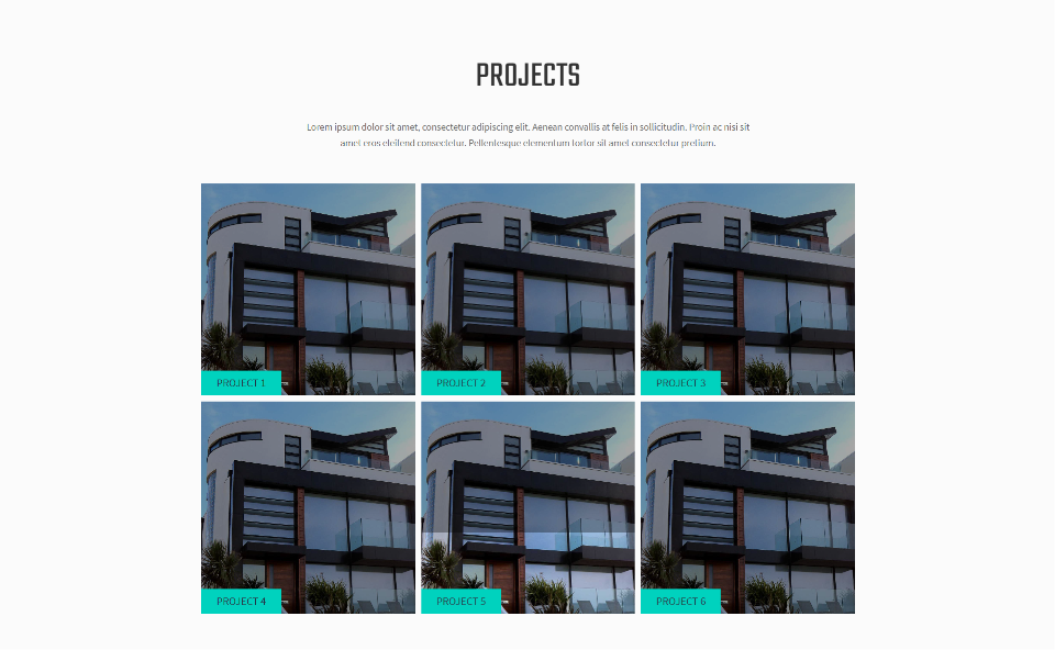 Duriza Home Page Projects Section