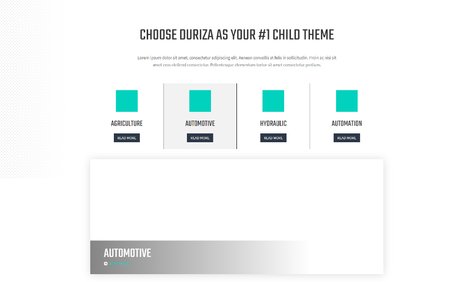Duriza home Page Services Section