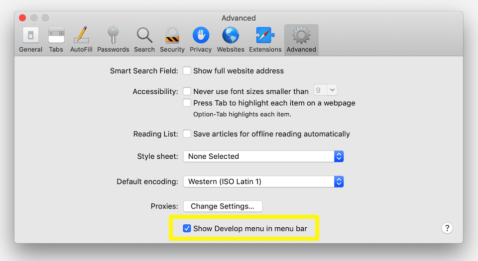 Enabling Safari's dev tools.