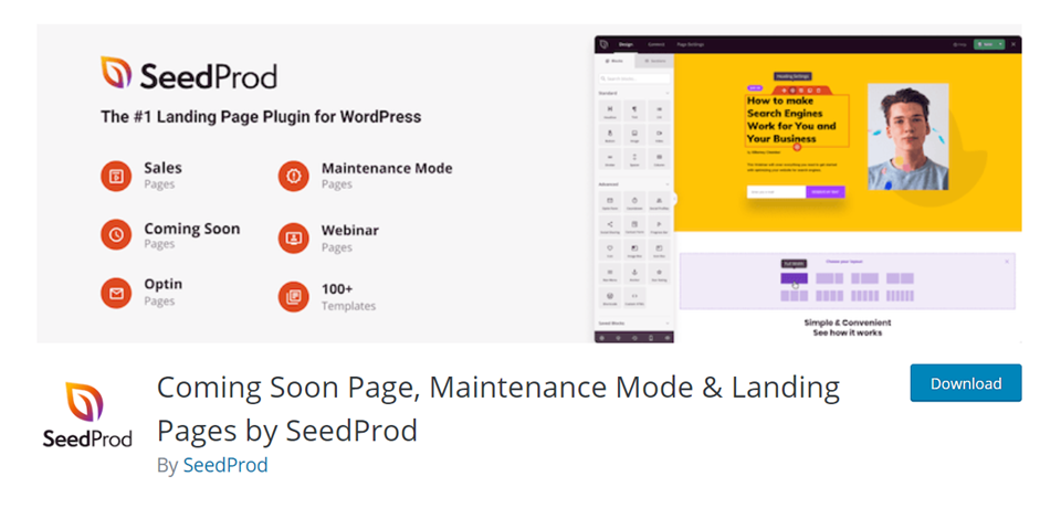 seedprod 404 pages