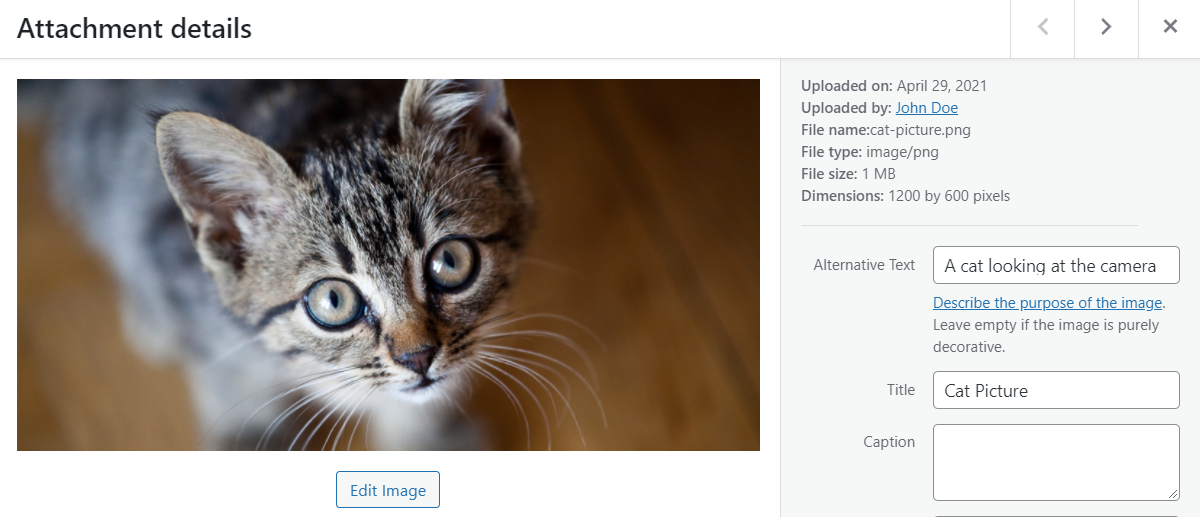 Adding a cat picture to WordPress