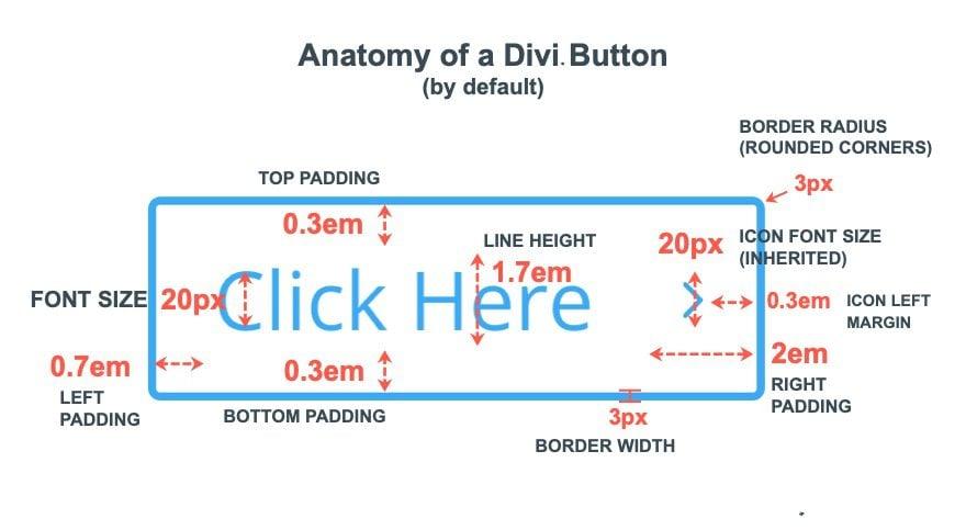 fluid button designs in divi