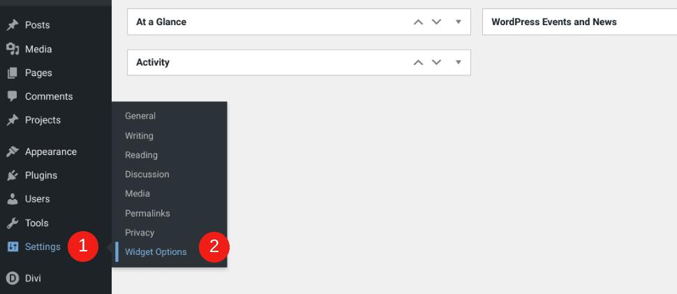 The Widget Options menu item in WordPress.