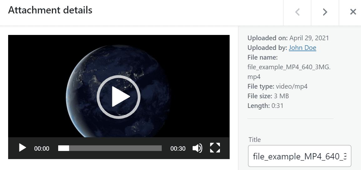 A video's attachment details window in WordPress