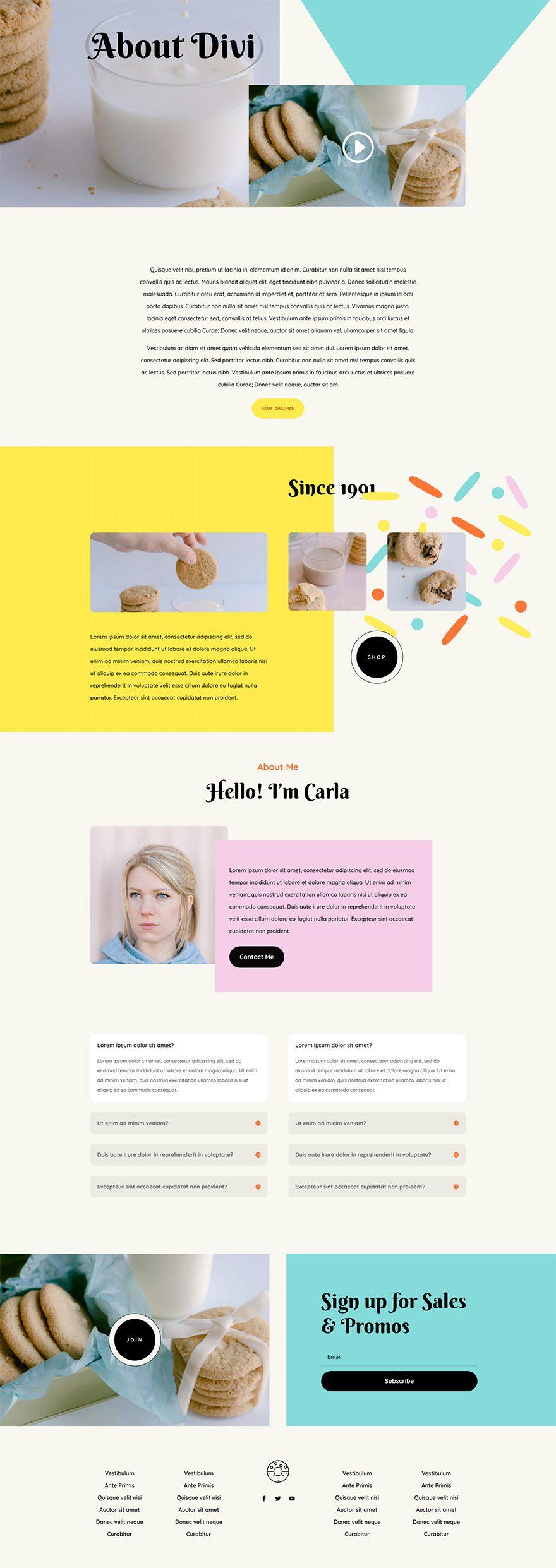 homemade cookies website