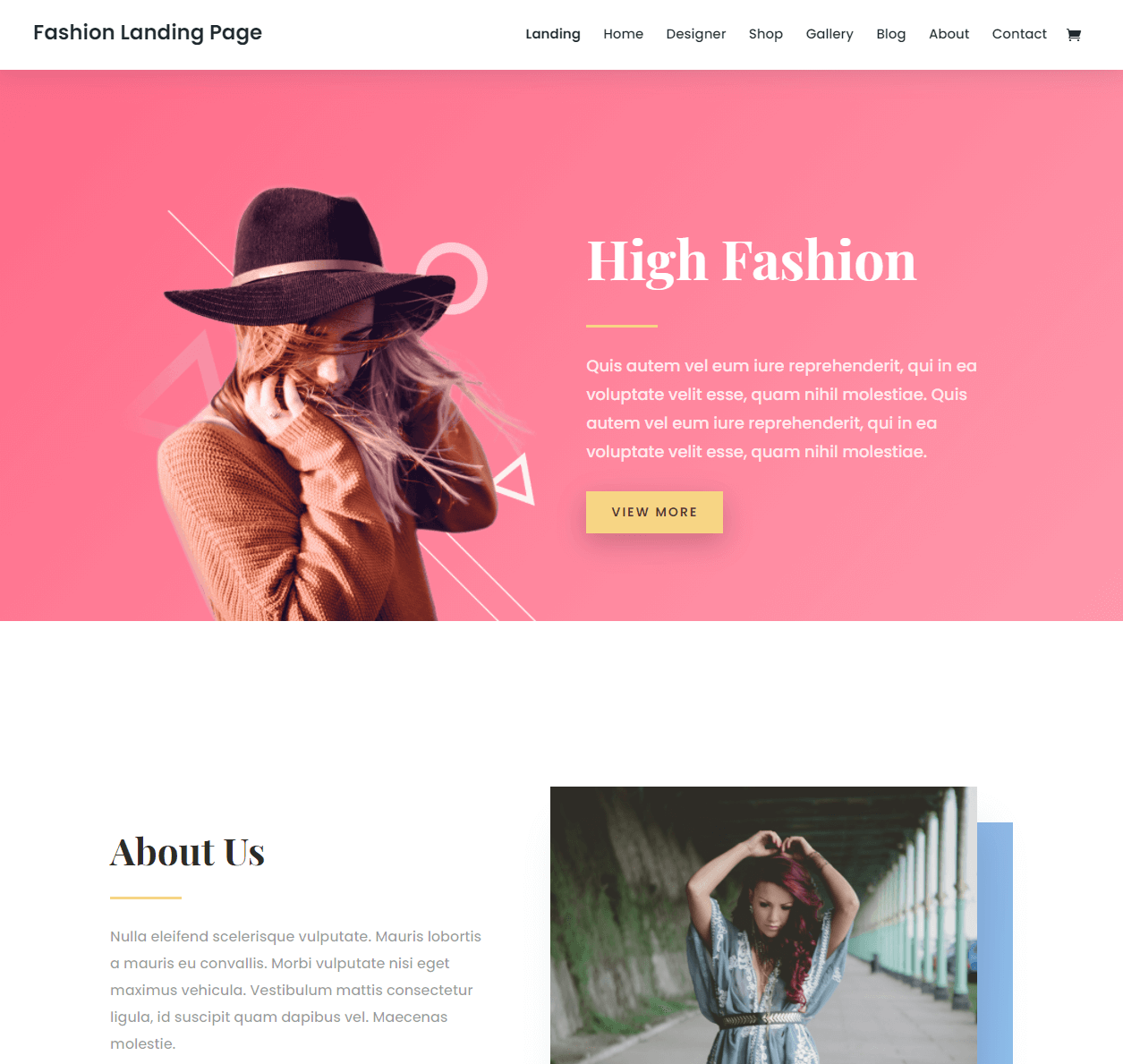 An example of a Divi landing page