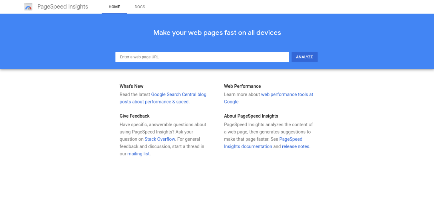 The Google PageSpeed Inisghts website.