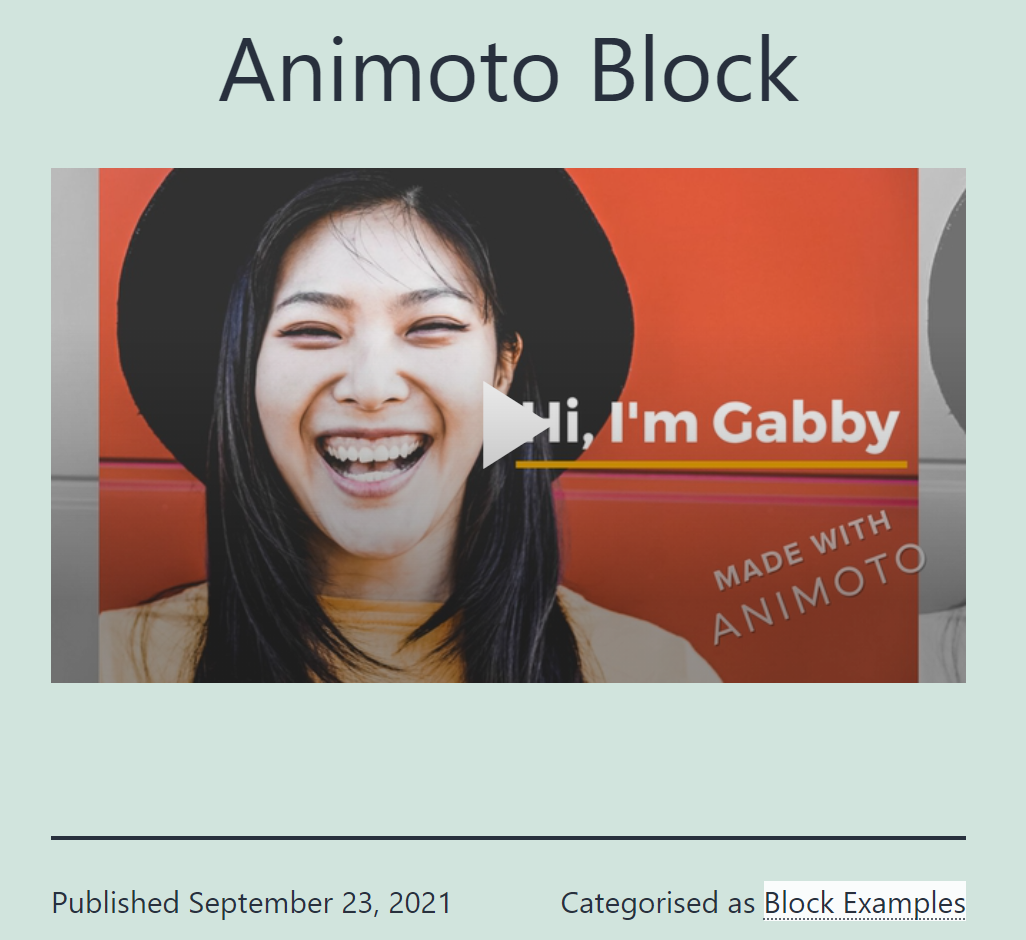 An Animoto block on a blog page
