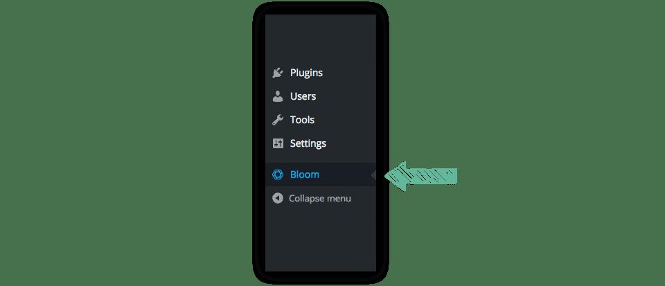 Comment mettre à jour le plugin bloom ?