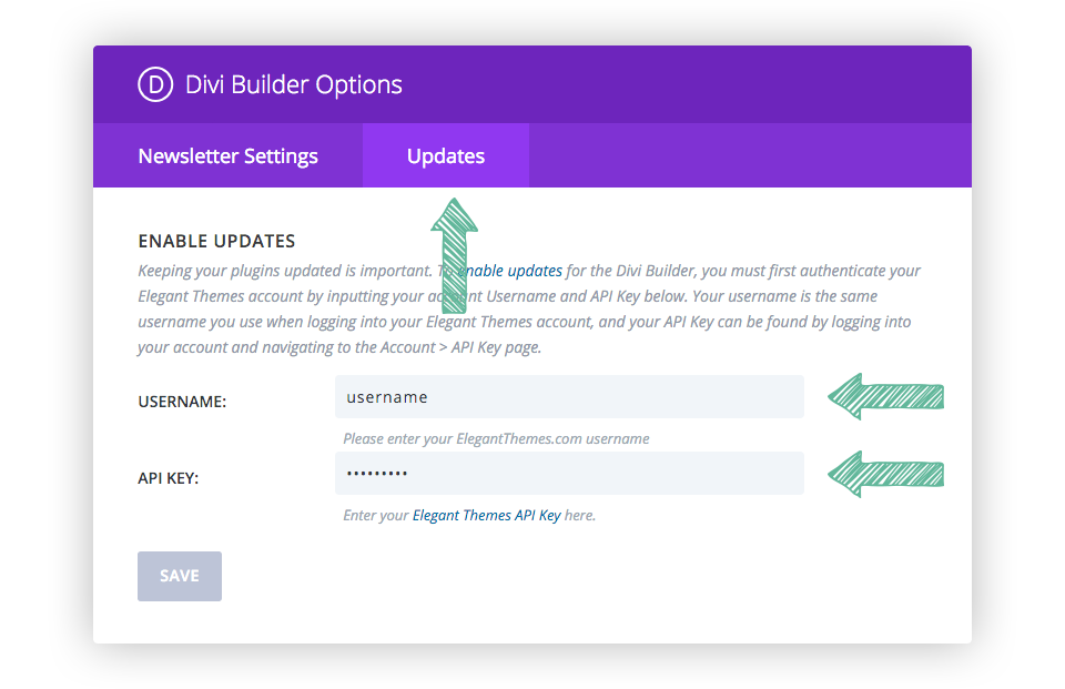 How to update your divi builder wordpress plugin elegant themes documentation - Api key divi ...