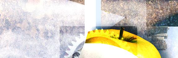 Morbi in ligula praesent fringilla nisl euismod urna