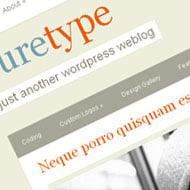 New Theme: PureType