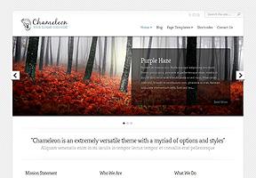 Site Comercial Chameleon