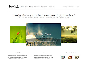Modest theme