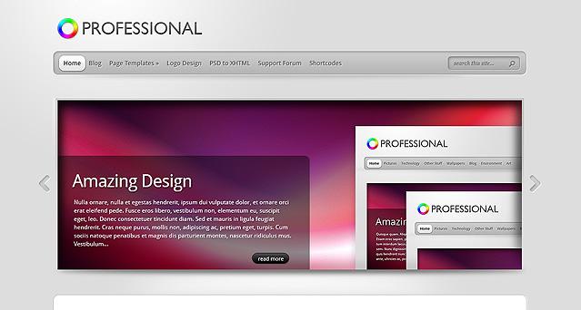 The Professional WordPress Theme
