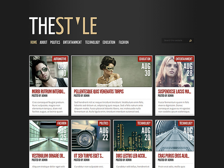 Example of a magazine theme